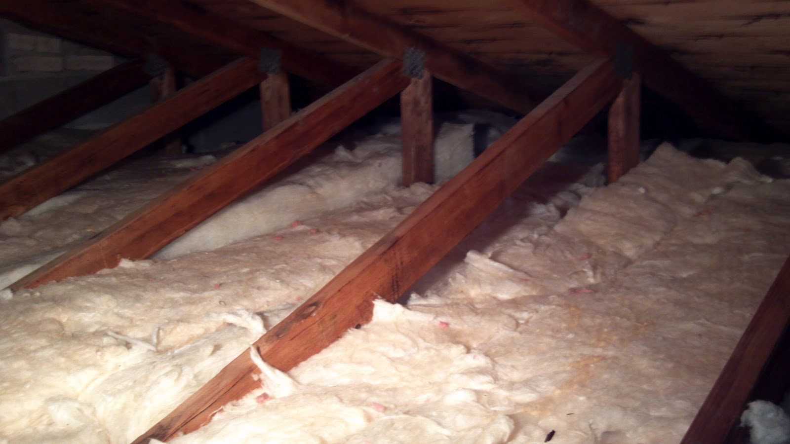 What S In Your Attic Happy Homeowners