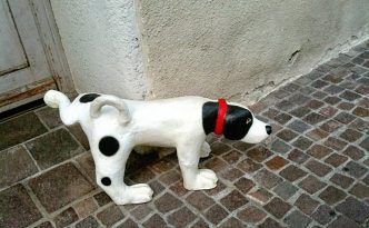 dog.pee