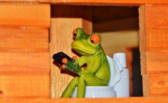 frog-toilet