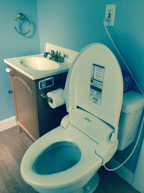 Plug In Toilet Seat Rona Fischman