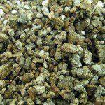Vermiculite1