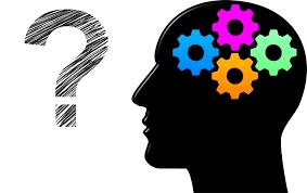 Brain, thinking